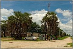 DSC08760PJ_resultat (http://phj.bookfoto.com/) Tags: okavango botswana afrique philippe jubeau
