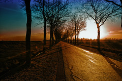 The golden road (LeChienNoir) Tags: 2017 vechtdal overijssel canon canon5dmark3 5dm3 lechiennoir lechiennoirnl landschap landscape s