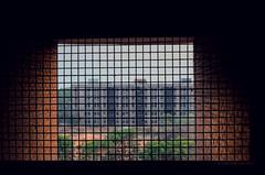 LIGHT AND SHADOW (akashdas43) Tags: light architecture building tree green album d7000 flicker 1855