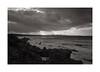 Montirussu n° 2 (Franco & Lia) Tags: blackandwhite seascape film analog landscape mare apx100 epson agfa paesaggio argentique pellicola analogico v500 adox noiretblank nikonl35af2 aph09 montirussu
