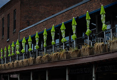 at the ready (dotintime) Tags: sun market terrace balcony row line diagonal patio standby shade soldiers ready umbrellas prepared meganlane dotintime