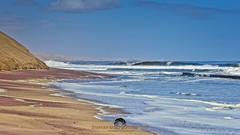 Namibian Coast (Stephen Ball Photography) Tags: ocean sea seascape beach water canon coast seaside sand waves dune wave atlantic coastal 5d coastline sanddune seashore atlanticocean breakingwave garnet sandybeach beachbreak ef100400mmf4556lisusm ef100400mm stephenball canoneos5dmarkiii 5dmarkiii stephenballphotography canon5dmkiii5d wwwstephenballphotocom stephenballphoto