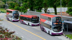 DSC_2451 ((buses[IN]gapore!)) Tags: eclipse volvo transit wright gemini scania sbs gemilang
