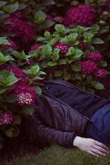 Flowerbed (Stefanie Michaela Thiele) Tags: flowers boy nature youth garden death hand sleep inspired flowerbed dreams teenager gregory hiding anxiety crewdson