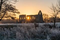 Newark Priory sunrise 20161204_9 (Graham Dash) Tags: surrey newarkpriory sunrise frost 2016pad
