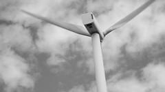 116 (The Cudgegong) Tags: wind farm monochrome