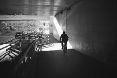 sunbeam (gato-gato-gato) Tags: 35mm asph ch iso400 ilford leica leicamp leicasummiluxm35mmf14 mp mechanicalperfection messsucher schweiz strasse street streetphotographer streetphotography streettogs suisse summilux svizzera switzerland wetzlar zueri zuerich zurigo z¸rich analog analogphotography aspherical believeinfilm black classic film filmisnotdead filmphotography flickr gatogatogato gatogatogatoch homedeveloped manual rangefinder streetphoto streetpic tobiasgaulkech white wwwgatogatogatoch zürich manualfocus manuellerfokus manualmode schwarz weiss bw blanco negro monochrom monochrome blanc noir strase onthestreets mensch person human pedestrian fussgänger fusgänger passant