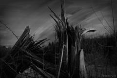 April 28th 2011 Tornado (Dawg Gone) Tags: tornado destruction mothernature twisted watchout