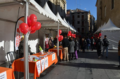 DIV Lleida (30.11.16)