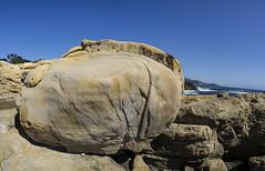 DSC1139a6000a  Point Lobos   © 2016 Paul Light (Paul Light) Tags: california pacificocean pointlobos reallyrightstuffpanokit coast landscape ocean outdoors outside rock sky trees water pointlobosstatereserve