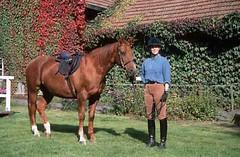 lzs7-2459 (lotharlenz) Tags: reitstiefel reitkappe reithose ausrüstung zirgs pferd paard lotharlenz konj horse hobu hestur hest häst equus cheval cavalo caballo