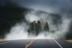 Highway to hell (nils_P) Tags: highway road street fog smoke trees wood forest yellowstone thermal mystic