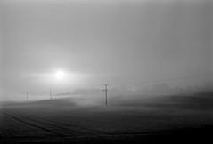 Pylons in the mist (RoryO'Bryen) Tags: pylons mist winter hiver invierno inverno blackandwhite noiretblanc blancoynegro roryobryen rangefinder copyrightroryobryen leicamp leicasummiluxm50f14asph selfdeveloped standdeveloped rodinal 1100 kodak trix dusk