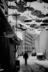 Winter #steffzh #zurich #zürich #street #streetphotographie #swiss #schweiz #blackandwhite #bw #myzürich #olympus #myzüri #photographie #visitzürich #winter #snow #umbrella #schnee #regenschirm #hive #zürichwest #alternative #mann (20th century photo) Tags: blackandwhite photographie hive regenschirm schnee myzürich visitzürich alternative swiss schweiz zurich street streetphotographie zürich olympus umbrella myzüri snow mann steffzh zürichwest winter bw