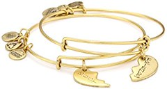 """Alex and Ani """"Charity by Design"""" Best Friends Russian-Gold Bangle Bracelet, Set of 2 (goodies2get2) Tags: 25to50 amazoncom bestsellers gold toprated"""
