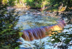 Sunlight hitting the tannins colored water at Tahquamenon Falls (PhotosToArtByMike) Tags: tahquamenonfalls lowerfalls michigan tahquamenonfallsstatepark mi tahquamenonriver upperpeninsulaofmichigan upperpeninsula up uppermichigan waterfall river rapids tanninswater tannic sunlight cedarswamps forested forest newberrymichigan autumn autumnleaves