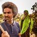 At the orchard, Somaliland