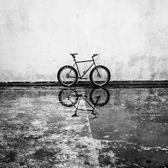 4WD (ibikenz) Tags: bw reflection water bike bicycle magazine blackwhite upsidedown singlespeed pugsley surly bombbunker fatbike rx100 thudbuster hobsonville sonycybershotdscrx100 bombpoint