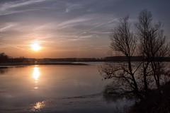 sul po (mat56.) Tags: trees sunset sky sun water alberi reflections river landscapes tramonto fiume atmosphere cielo po antonio sole acqua riflessi paesaggi atmosfera lombardia lodi pianura lodigiano padana sennalodigiana cortesantandrea mat56 romei