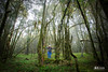 Bosque Mesofilo Ixtlan (ecoturixtlan) Tags: travel naturaleza nature mexico oaxaca turismo sierrajuarez ecoturismo sierranorte ixtlan kiosgarcia kiosphotography