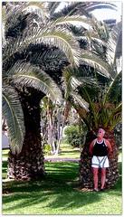 FUERTE 2012 MAART 245 (aad.born) Tags: espaa ferry spain fuerteventura espana canaryislands spanje loslobos islascanarias veerboot corralejo  canarischeeilanden  isladelobos corralejobeach aadborn