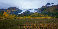 Autumn Foliage at Worthington Glacier (Waldemar*) Tags: usa alaska richardsonhighway worthingtonglacier ice icefield autumn fall season foliage nature landscape