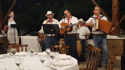 Musicians at the TDWG2016 Dinner