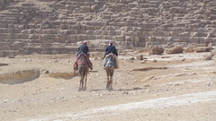 Camels at the Pyramids (Rckr88) Tags: camels pyramids camelsatthepyramids pyramid pyramidsanddesert thepyramidsofgiza giza cairo egypt africa travel travelling sand