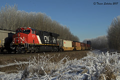 Clean and Frosty (Trevor Sokolan) Tags: canadian canada cn cnr canadiannational et44ac ge generalelectric gevo evo tier4 intermodal meet freight locomotive diesel siding carvel edsonsub alberta ab winter frost snow railway railroad railfan rail railfanning trains train trainspotting tracks q119