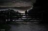 363 ~ 366 (BGDL) Tags: lightroomcc nikond7000 bgdl goingfor4inarow~366 niftyfifty afsnikkor50mm118g prestwick trail pathway gate gateway walker silhouette intothesun dog dogwalker