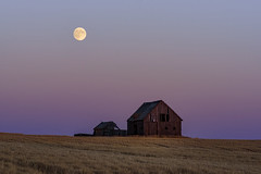 Eclipsed (garshna) Tags: abandoned abandonement abandonedhomestead autumn barn deserted derelict easternwashington environment forgotten field farm homestead isolated landscape neglected nature night outdoors old palouse sky sunset moon bloodmoon washingtonstate