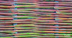 Stripes and Colors (Explored) (Frans van der Boom) Tags: fvdb nikon netherlands holland d5200 decisive moment creative flickr flickriver explore 18 best camera prime lens eyed eye scene photography