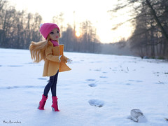Ashlynn's Winter (Mus Parvulus) Tags: ashlynnella everafterhigh eah doll winter snow customdollclothes sunset