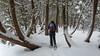 Back To Basics (Bert CR) Tags: grotto outdoors snow snowshoeing us winter cypruslake nationalpark brucepeninsulanationalpark backtobasics cold nointerruptions stayingwarm trees nationalparksofcanada breath