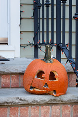 Moldy Jack-o-lantern After Halloween (Erin Cadigan Photography) Tags: after autumn carve carving creepy dead decay decaying decoration end face fall gourd halloween holiday jackolantern mold moldy november october orange outdoors outside over pumpkin rotten rotting sad scary season seasonal toxic vertical