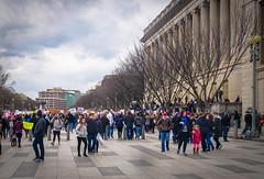 2017.01.29 No Muslim Ban Protest, Washington, DC USA 00310