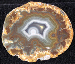 Agate (Borden Formation, Lower Mississippian; eastern Kentucky, USA) 19 (James St. John) Tags: agate nodule nodules geode geodes quartz chalcedony borden formation kentucky mississippian