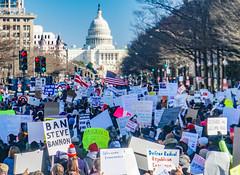 2017.02.04 No Muslim Ban 2, Washington, DC USA 00517