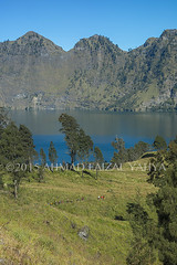 _DSC0573SSRFw (a.faizal) Tags: mountain lake indonesia asian volcano asia hiking hike hikers volcanic lombok asean anak mountaineer danau rinjani segara lombokisland mountrinjani segaraanak danausegaraanak segaraanaklake