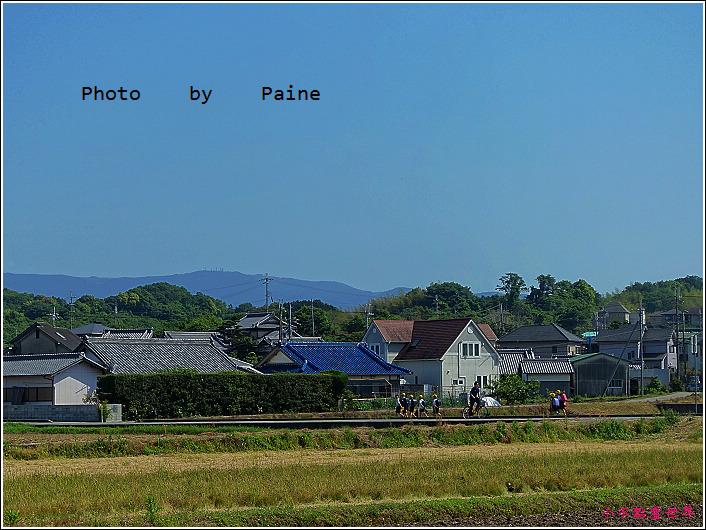 和歌山大池遊園-平池綠地公園 (31).JPG
