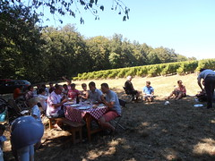 "Levin Harvest Picnic • <a style=""font-size:0.8em;"" href=""http://www.flickr.com/photos/133405556@N08/19457995083/"" target=""_blank"">View on Flickr</a>"
