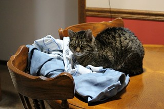 Guarding the Dirty Linens
