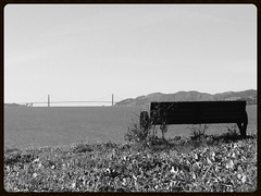 View of the Gate (melystu) Tags: hbm blackandwhite goldengate bench hill vista ca bayarea thebay bay gate thruthegate monochrome berkeley park urban goldengatebridge césarchavezpark