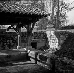Le lavoir de Sauternes (Dom Caz) Tags: 6x6 ricohflex sauternes