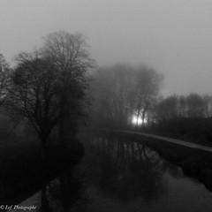 20161231Brouillard-14 (loflol) Tags: coteaux brouillard brume ancien grain