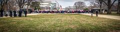 2017.01.29 Oppose Betsy DeVos Protest, Washington, DC USA 00254