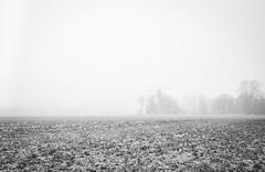 December forrest 5 (densshod) Tags: blackandwhite blackwhite woods winter longexposure landscape nd outdoor olympus out contrast fog forest sweden sky color field
