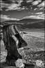 Stoic (Garry Corbett) Tags: headshot carving wood beach barmouth blackwhite sunshine clouds 2017 flickrsbest 123bw