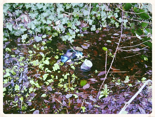 "Drunk Swamp Runner • <a style=""font-size:0.8em;"" href=""http://www.flickr.com/photos/11862598@N00/32217778290/"" target=""_blank"">View on Flickr</a>"