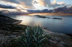 Morning Fire (mvdc0w) Tags: marseille callelongue sunset sunrise colors sea clouds sky fire red fresh cactus provence laurent bastide sun light alpes